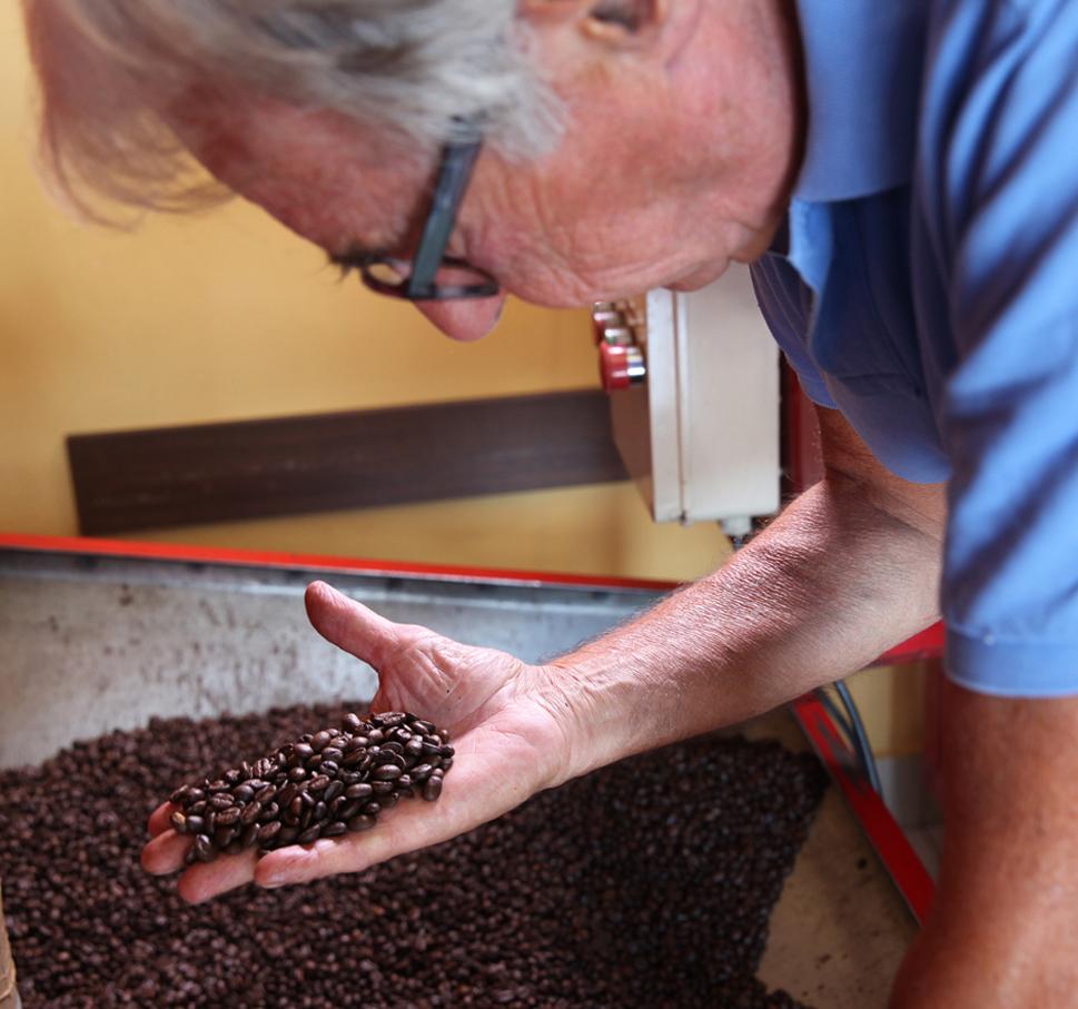 analisi caffè